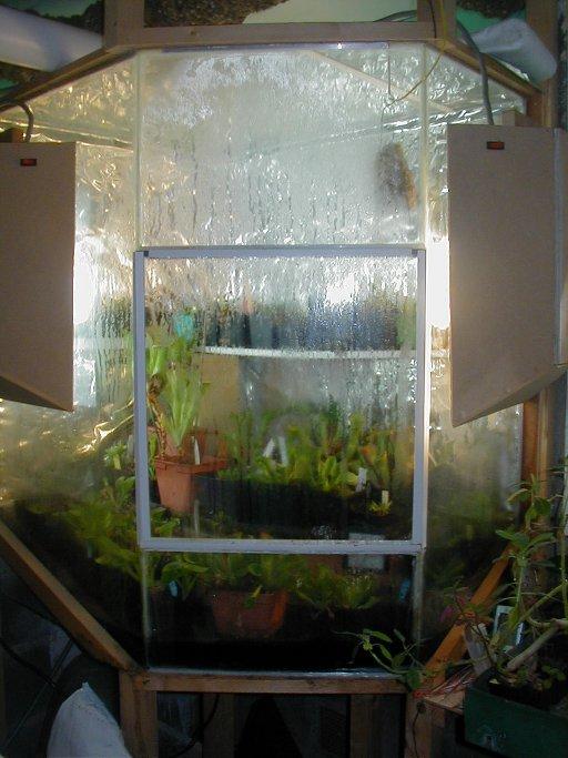 terrarium Damien Chamcult